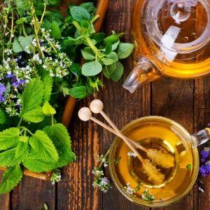 infusion de plantes et huiles essentielles en 10 questions